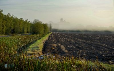 King Alfred in the Somerset Marshes – Part 2